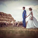 profesionálny svadobný fotograf